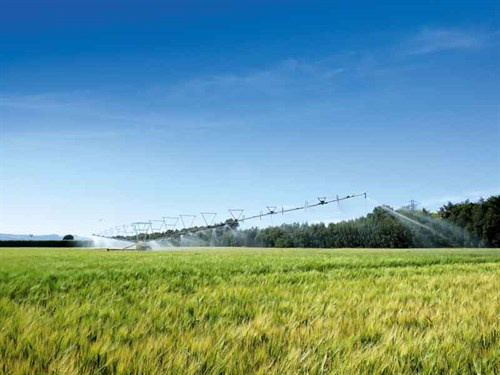 Irrigation -NZ-1