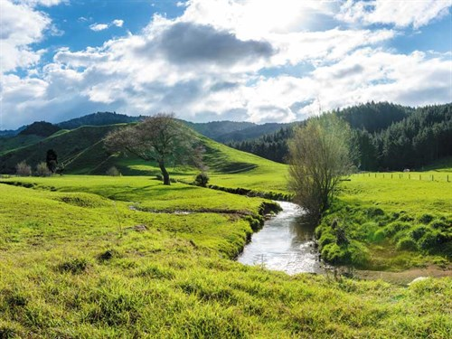 New -Zealand -farm _Getty Images -946397900
